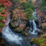 Ryuzu Fall Colours